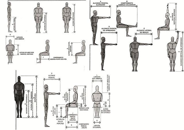 Ergonomia de interiores vivartesanato for Arquitectura de interiores a distancia
