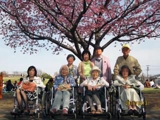 唯一満開だった一本の桜の木の下に集合!