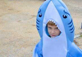 O Tubarão Sebastião