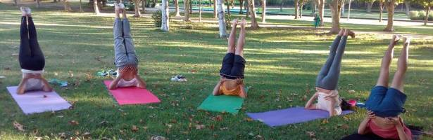Yoga no Dia a Dia – Yamas, as Normas Sociais