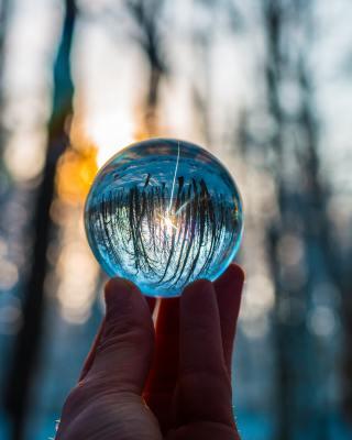 Uma bola de cristal a mostrar o mundo do avesso, mas focado.