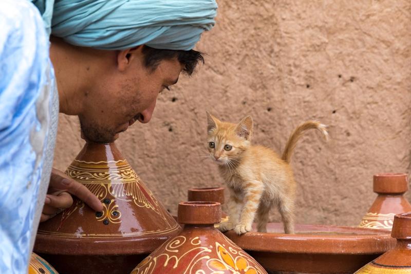 Viver a Viagem - Erg Chigaga - Marrocos - Alexandre Disaro - 147
