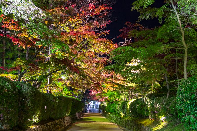 viver-a-viagem-japao-japan-koyasan-monte-koya-mount-koya-28