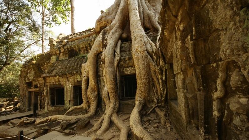 Tempio Di Angkor - Cambogia