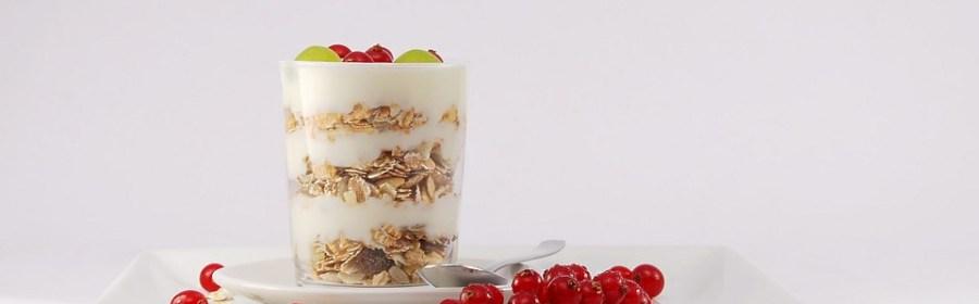 cibo fermentato probiotici