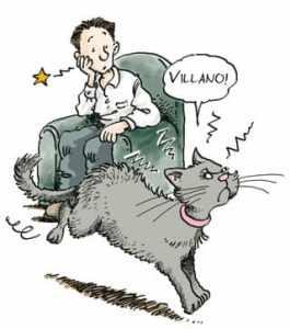 gatto-morde-quando-accarezzato