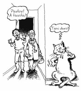 gatto-si-nasconde