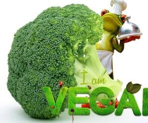 I 10 punti chiave per essere un vegano ben nutrito