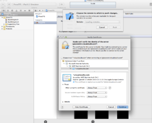 Xcode - Add remote Repository 4