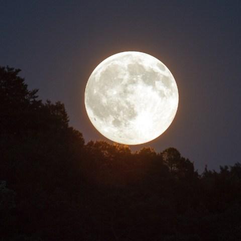 Aprovecha-que-estas-en-casa-para-maravillarte-con-la-última-superluna-del-2020 06/05/20