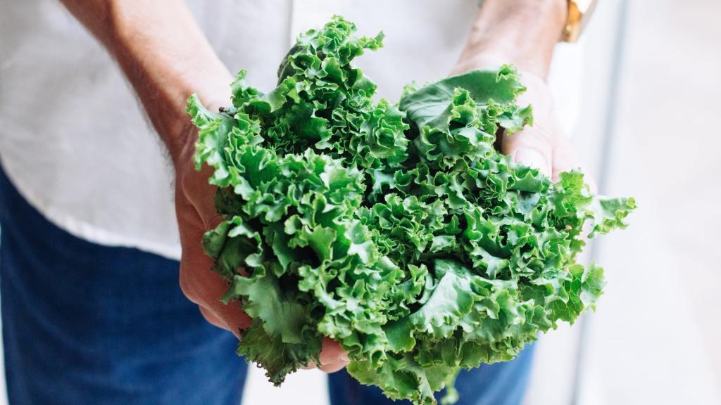 como-cultivar-lechuga-en-casa-4-de-mayo-2020