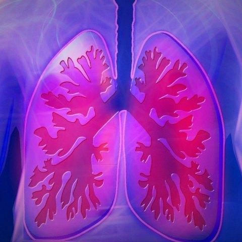 como-fortalecer-los-pulmones