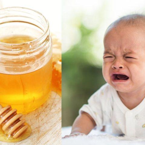 bebés miel