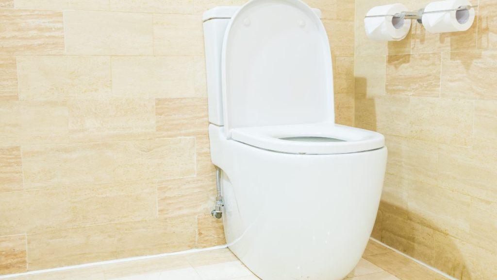 como quitar el sarro del baño regadera facil