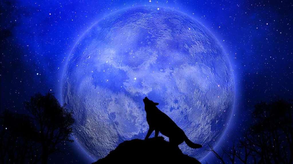 Luna de Lobo 2021