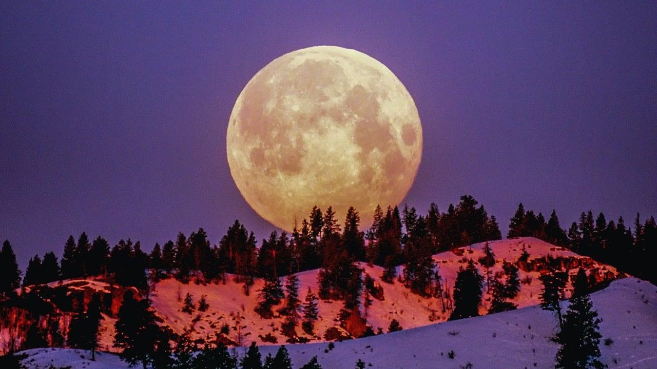 luna de gusano rituales abundancia