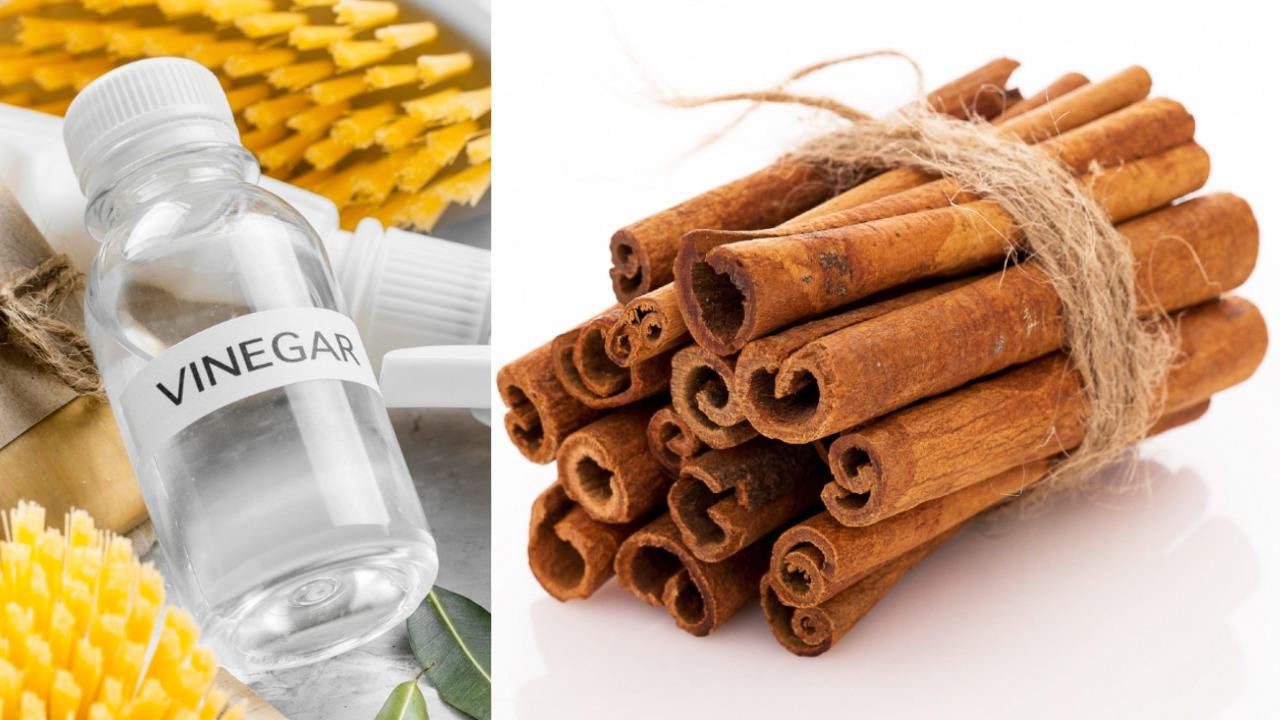 canela y vinagre dos ingredientes que ayudan a eliminar las energías negativas