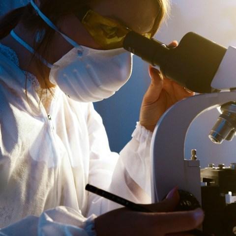 anticuerpos en por vida en casos de coronavirus moderado