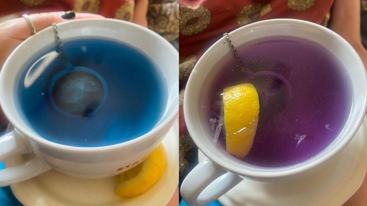 beneficios de tomar el té de mariposa todos los días