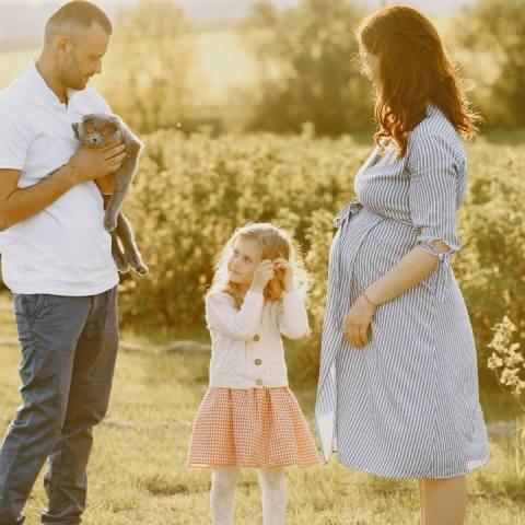 gato puede percibir un embarazo mito