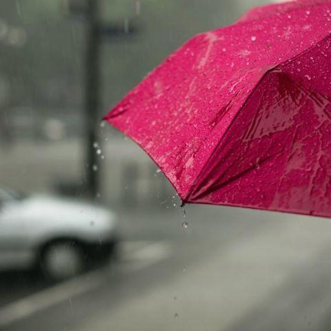 Aprovecha el agua de lluvia con estos consejos