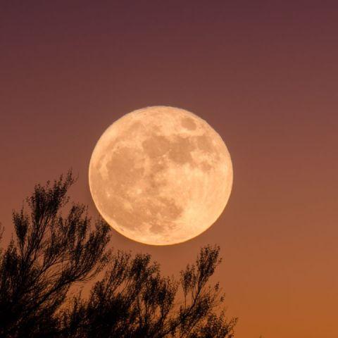 Qué es la Luna Llena de la Cosecha