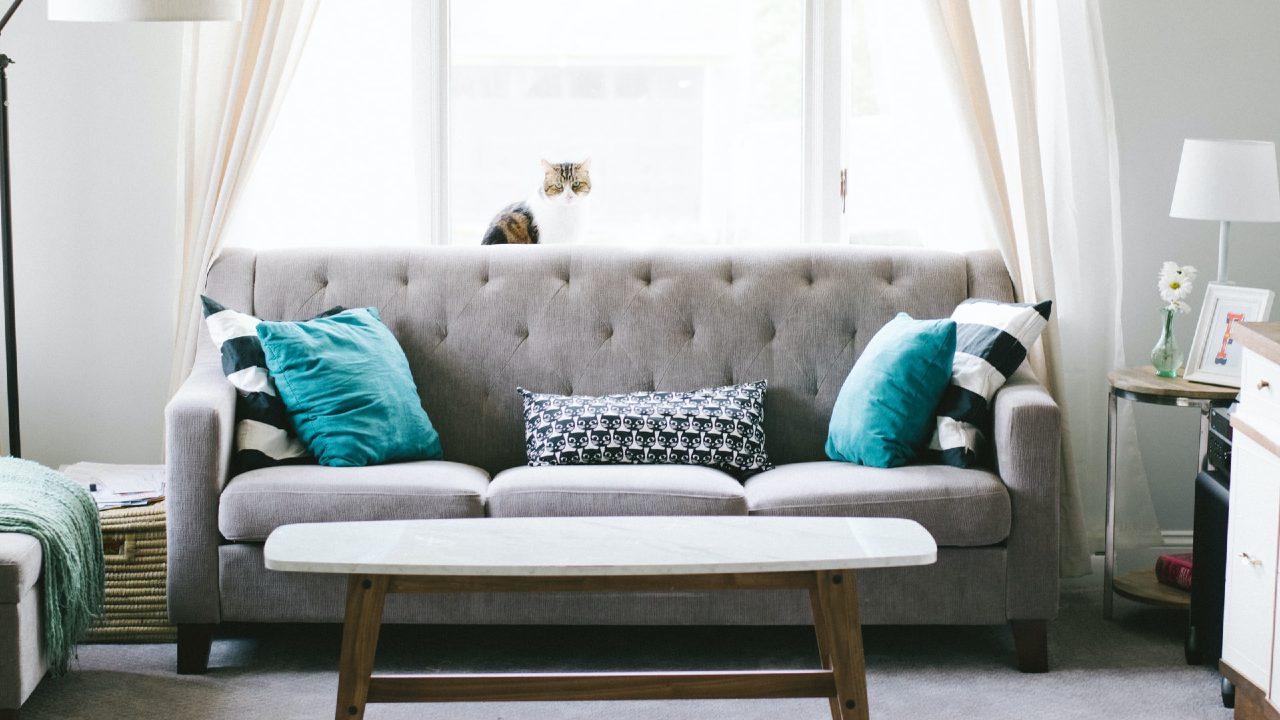 Cómo limpiar los sillones en casa dependiendo del material, ¡no los arruines!