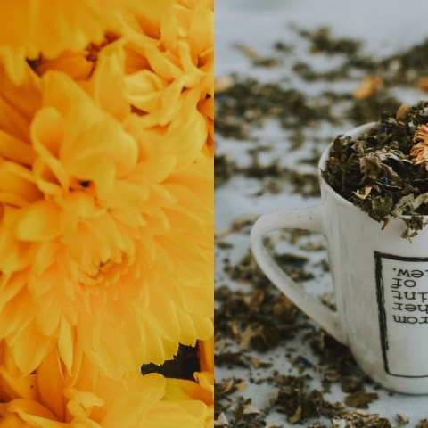 formas de reutilizar flor de cempasúchil