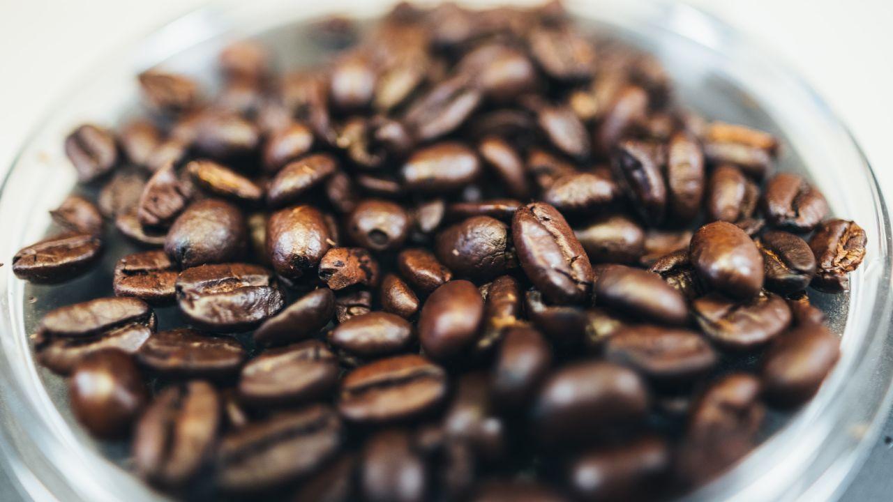 Quemar café para ahuyentar a los insectos