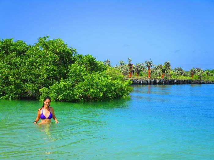Playa Mansa en Tortuga Bay