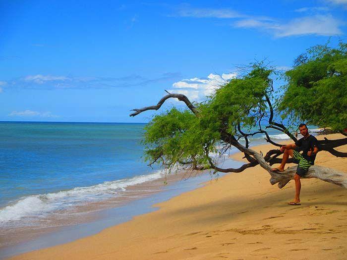 Antes de llegar a Lahaina hay multitud de playitas dónde puedes nadar, surfear o simplemente relajarte...