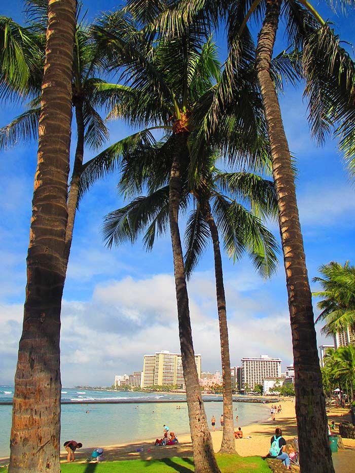 """Podemos decir que Waikiki es la mejor """"playa urbana"""" en la que hemos estado."""