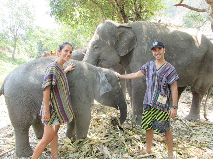 Elephant Jungle Sanctuary Chiang Mai