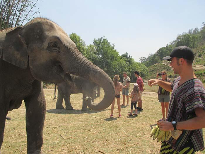 Un día en el Elephant Jungle Sanctuary. Nuestra experiencia.