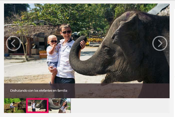 Excursión de un día al Santuario de Elefantes Chiang Mai