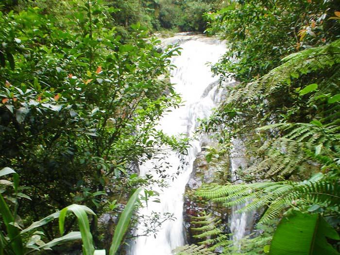 Hacer senderismo en Cameron Highlands Robinson Falls