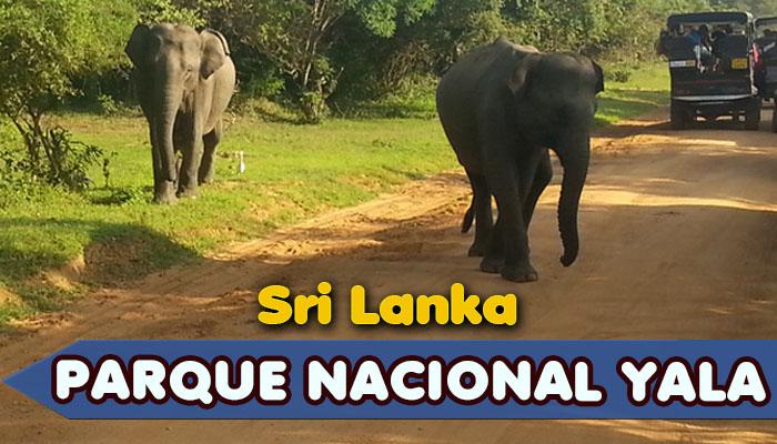 Parque Nacional Yala en Sri Lanka