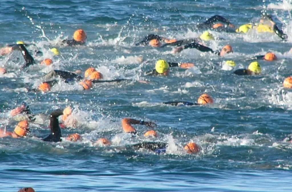 Conquer the triathlon swim
