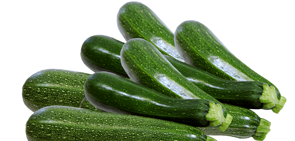 Resultado de imagen de calabacin