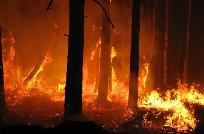 estate incendi