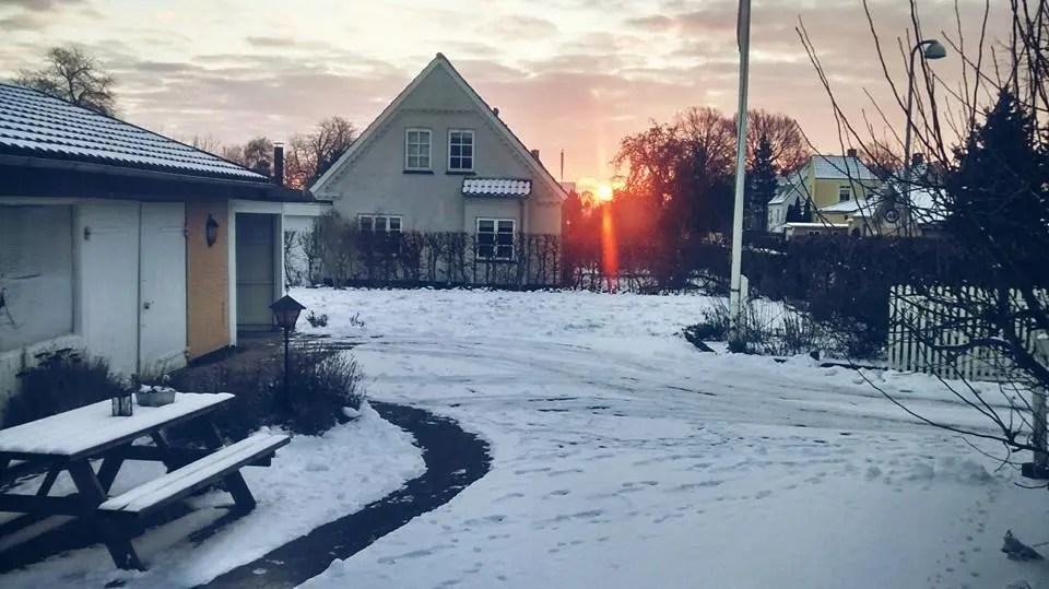 Estudiar en Dinamarca
