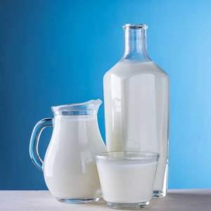 Mlijeko i mliječni proizvodi