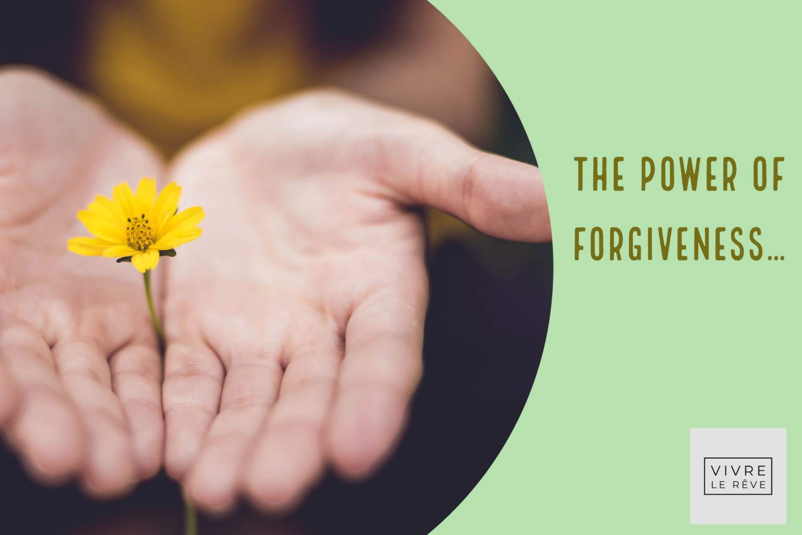 The Power of Forgiveness…