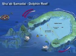 Sha´ab Samadai -Dolphin Reef 1