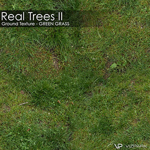 Real Trees Ground Texture - Green Grass