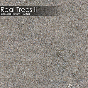 Real Trees Ground Texture - Sand