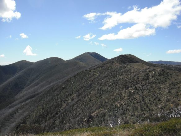 About halfway along the razorback with Mt Feathertop in the distance