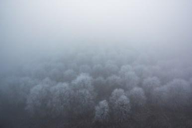 Mlžné zimní ráno
