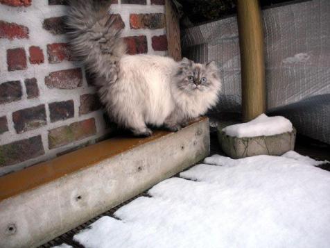elodie in sneeuw1
