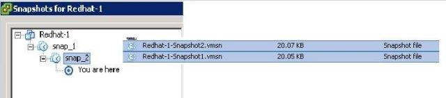 VMware Snapshot